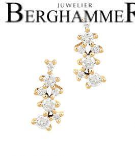 Bellissima Ohrstecker 18kt Gelbgold 21300295