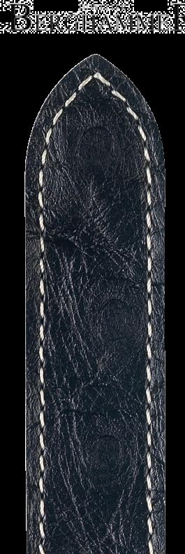 Massai Ostrich 04262051-1-18