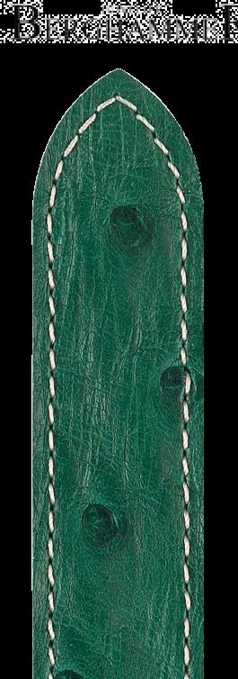 Massai Ostrich 04262041-1-19